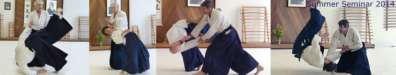 Twin Cities Aikido Center